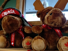 Souvenir moose for sale; Sundance Lodges
