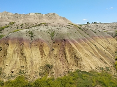 Yellow mounds overlook; Badlands