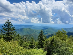 Over 11 million tourists visit the Great Smoky Mountains annually, and it is considered the most visited national park in the US