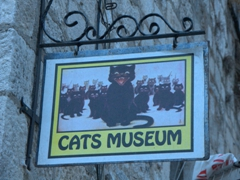 We had to laugh at this! A cat museum is stunning Kotor? There are so many other things we want to be spending our time doing here instead