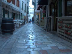 Well worn cobblestoned street; Kotor