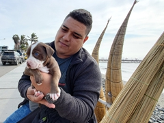 A local proudly holds up his puppy; Huanchaco