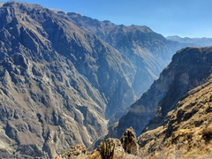Colca Canyon - one of the world's deepest canyons and famous for its giant Andean condors