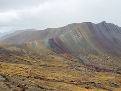 By the time we reached the third rainbow mountain of Palcoyo, the weather changed and snow obscured our view