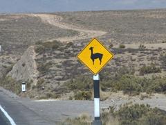 Yield to alpaca sign; Salinas y Aguada Blanca National Reserve