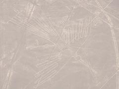 Hummingbird geoglyph; Nazca lines