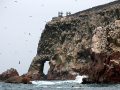 Elephant rock formation; Ballestas Islands