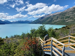 Staircase leading to lookout points; Perito Moreno