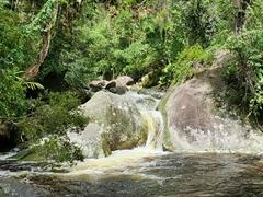 River running through Parque Nacional da Serra dos Orgaos; Teresopolis