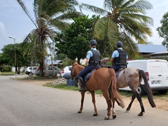 French police patrol on horseback; Kourou