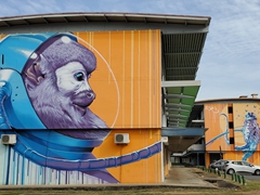 Mural of an astronaut monkey; Kourou