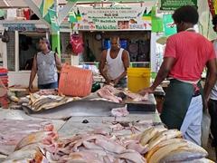 Seafood for sale; Bourda Market