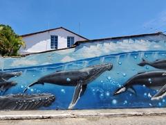Humpback whale mural; Caravelas