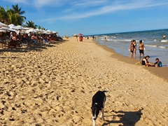 Trancoso was once Brazil's best hidden beach town but today, it is packed with tourists