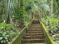 Path leading to Cachoeira da Roncadeira
