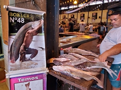 Poster near the entrance to Belem's famous fish market