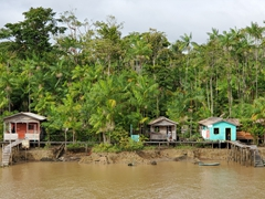 Wooden houses built along the Amazon River