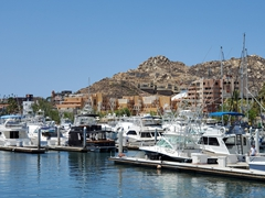 Marina view in Cabo