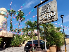 Cabo Wabo (founded by Sammy Hagar) is the most famous bar in Cabo