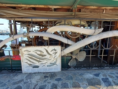 Whale bones by the marina