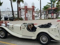 Antique car at Todos Santos Bay; Ensenada