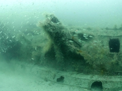 A murky view of the U-352 German Submarine wreck