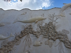 Wall of dolphins