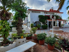 Our peaceful courtyard; Scuba Club