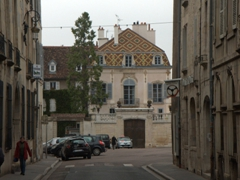Glazed, tiled roofs are an integral part of Burgundy. We saw lots of them in pretty Dijon