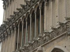 Partial view of the 51 decorative gargoyles (or grotesques) on the western façade of Notre Dame Church; Dijon