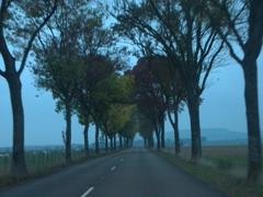 Drive back from Dijon to Semur-en-Auxois