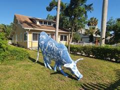Painted cow; Bradenton