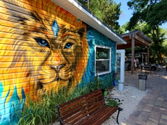 Lion mural at a cafe; Village of the Arts