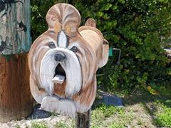 Doggie mailbox; Matlacha