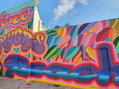 Colorful Fort Myers mural