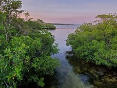 John Pennekamp Coral Reef State Park; Key Largo