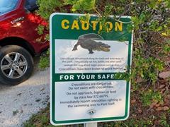 Crocodile warning sign; John Pennekamp State Park