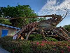 30 foot tall Betsy the lobster at Rain Barrel