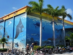 Wyland's Whaling Wall; Key West