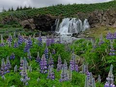 The small roadside waterfall of Sjávarfoss