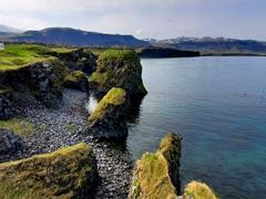 Coastline of Arnarstapi