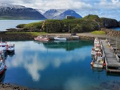 This quaint little fishing port is home to thousands of Atlantic puffins; Borgarfjörður eystri