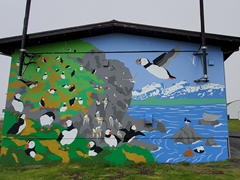 Puffin mural on a building in Borgarfjörður eystri