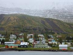 Houses in Seyðisfjörður