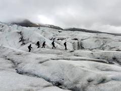Other hikers exploring Falljökull glacier