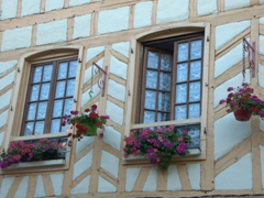 Timbered house windows; Auxerre