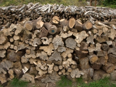 Woodpile; Bailly