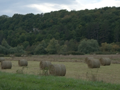 Bales of hay; Canal du Nivernais