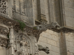 Gargoyles on the Church of St Martin; Clamecy