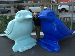Robby and his blue birds; Naviglio Grande